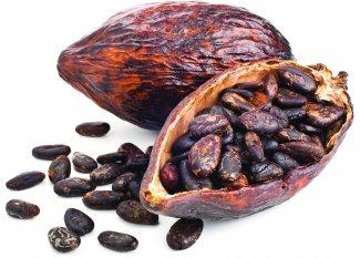OVERSTIMS UTMB Bar - F�ves de cacao/Noix de cajou