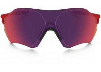Oakley Gafas EVZero Range Prizm Road
