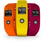Runtastic Colored Wirstband pour Orbit