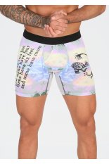 Stance Wholester Six Feet Boxer Brief M
